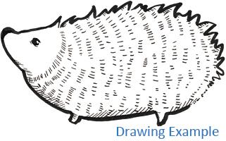 New Pigma Brush & Pen example